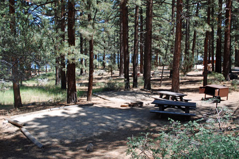 Indian Creek Campground, Indian Creek Reservoir, Humboldt-Toiyabe National Forest, CA