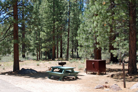 Turtle Rock Park Campground, Alpine County, CA