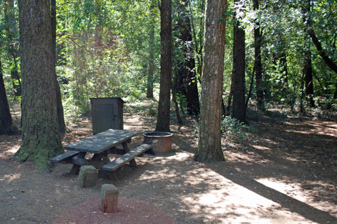 Hickey Campground, Standish-Hickey State Recreation Area, CA