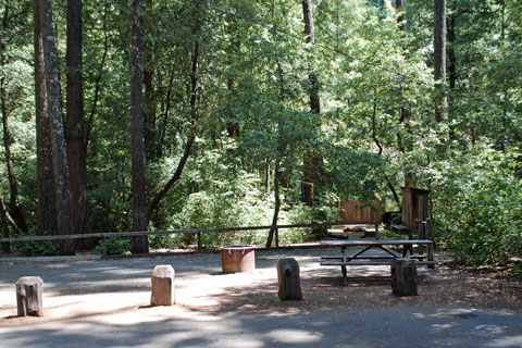 Madroine Campground, Richardson Grove State Park, CA