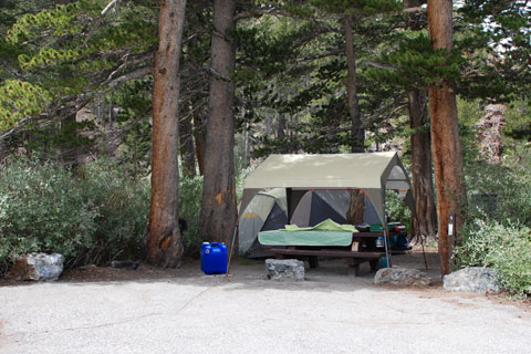 Ellery Lake Campground, Inyo National Forest, CA