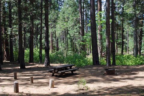 Greenville Campground, Plumas National Forest