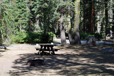 Haskins Valley Campground, Bucks Lake, Plumas National Forest
