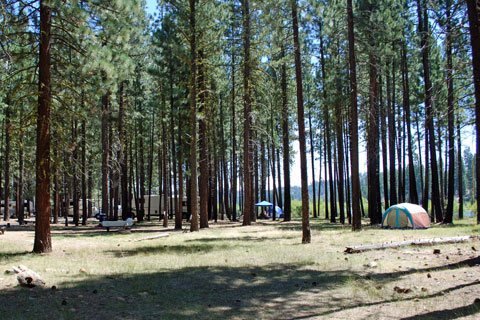 Lone Rock Campground, Antelope Lake, Plumas National Forest