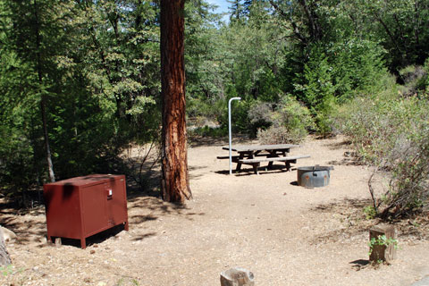 Spanish Creek Campground,  Plumas National Forest