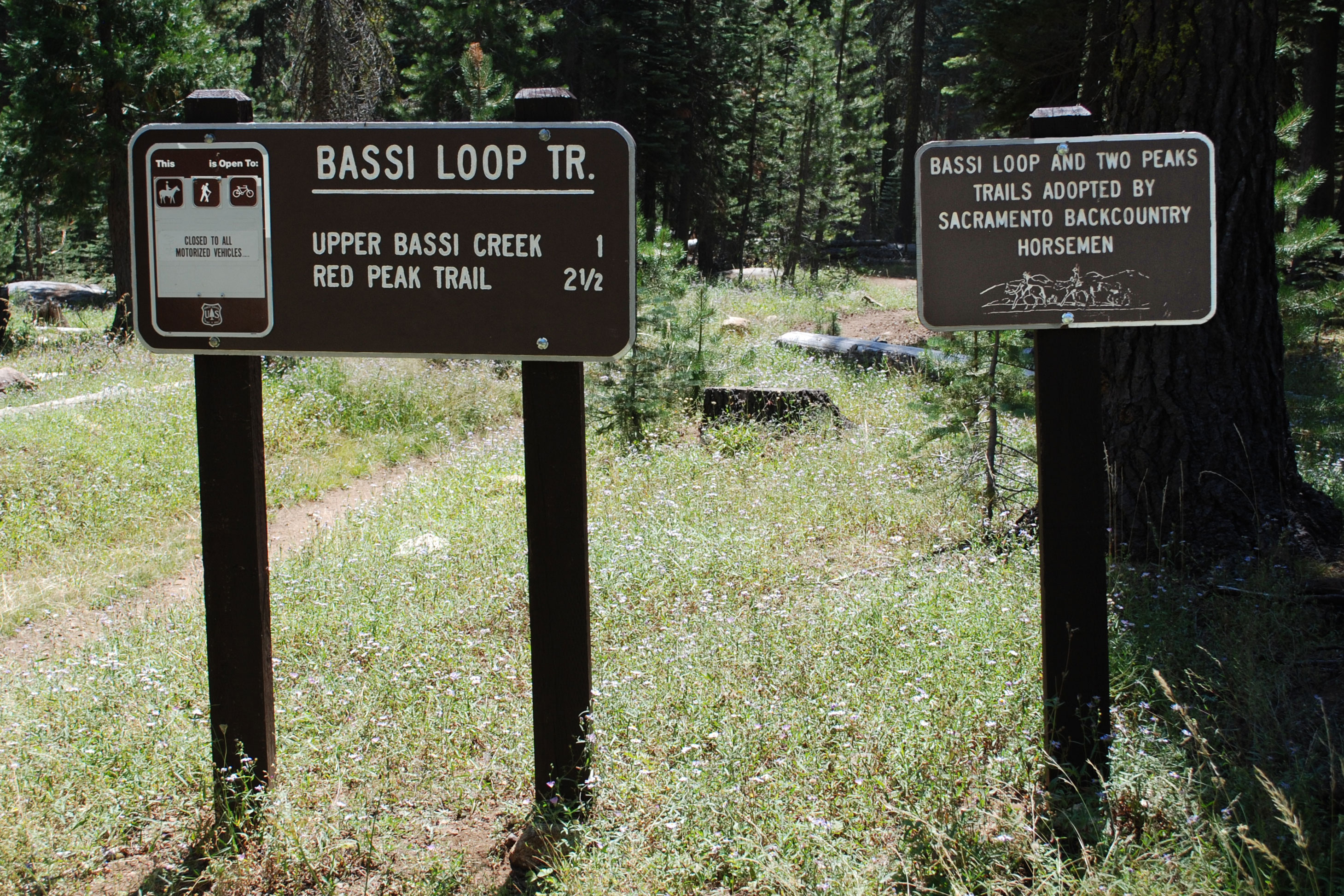 Trail sign for Bassi Loop,  Eldorado National Forest, CA